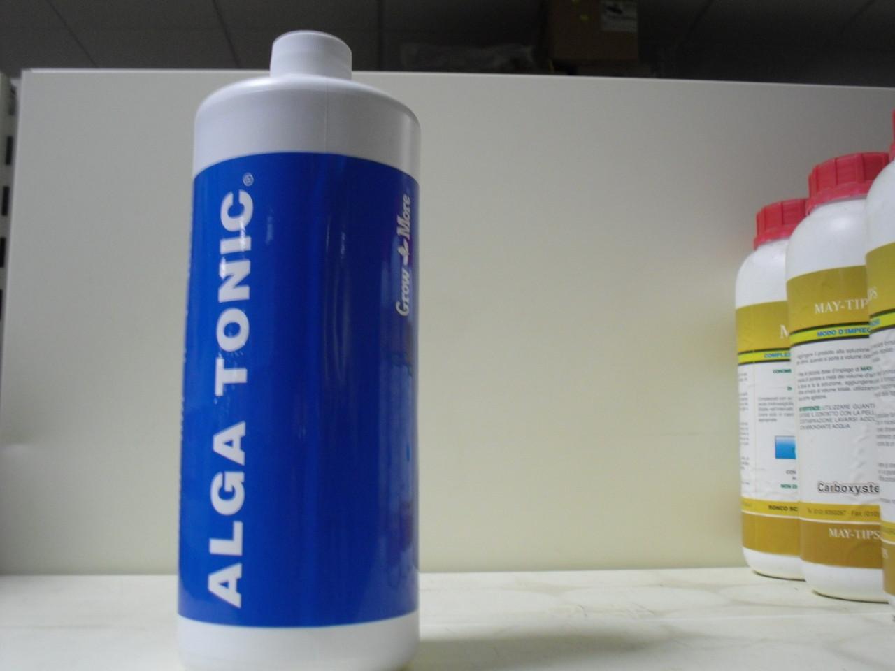 immagine alga tonic