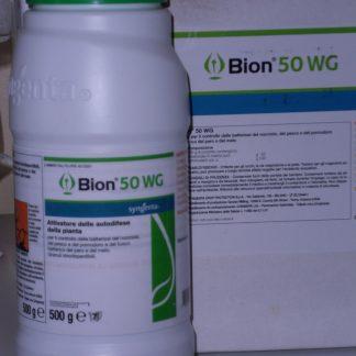 immagine bion