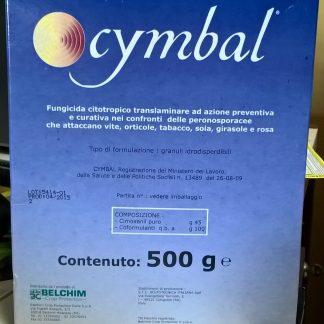 immagine cymbal