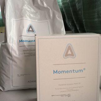 immagine momentum