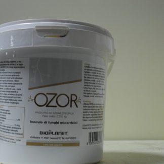 immagine ozor