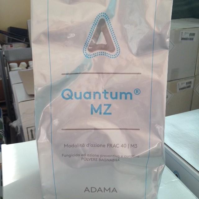 immagine quantum mz