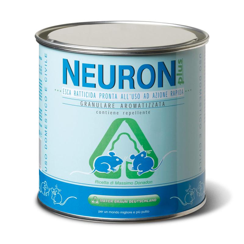 immagine neuron