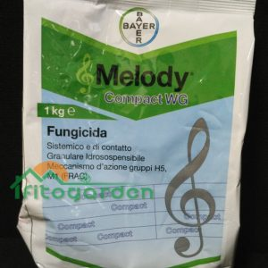melodycompact