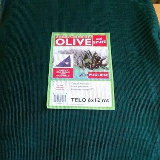 img_rete_olive