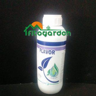 Immagine Flavor