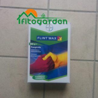 immagine Flint Max
