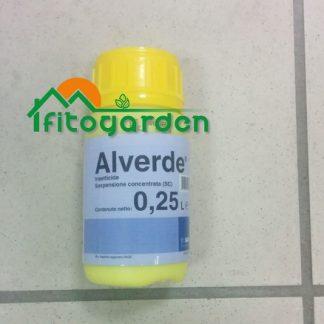 immagine Alverde