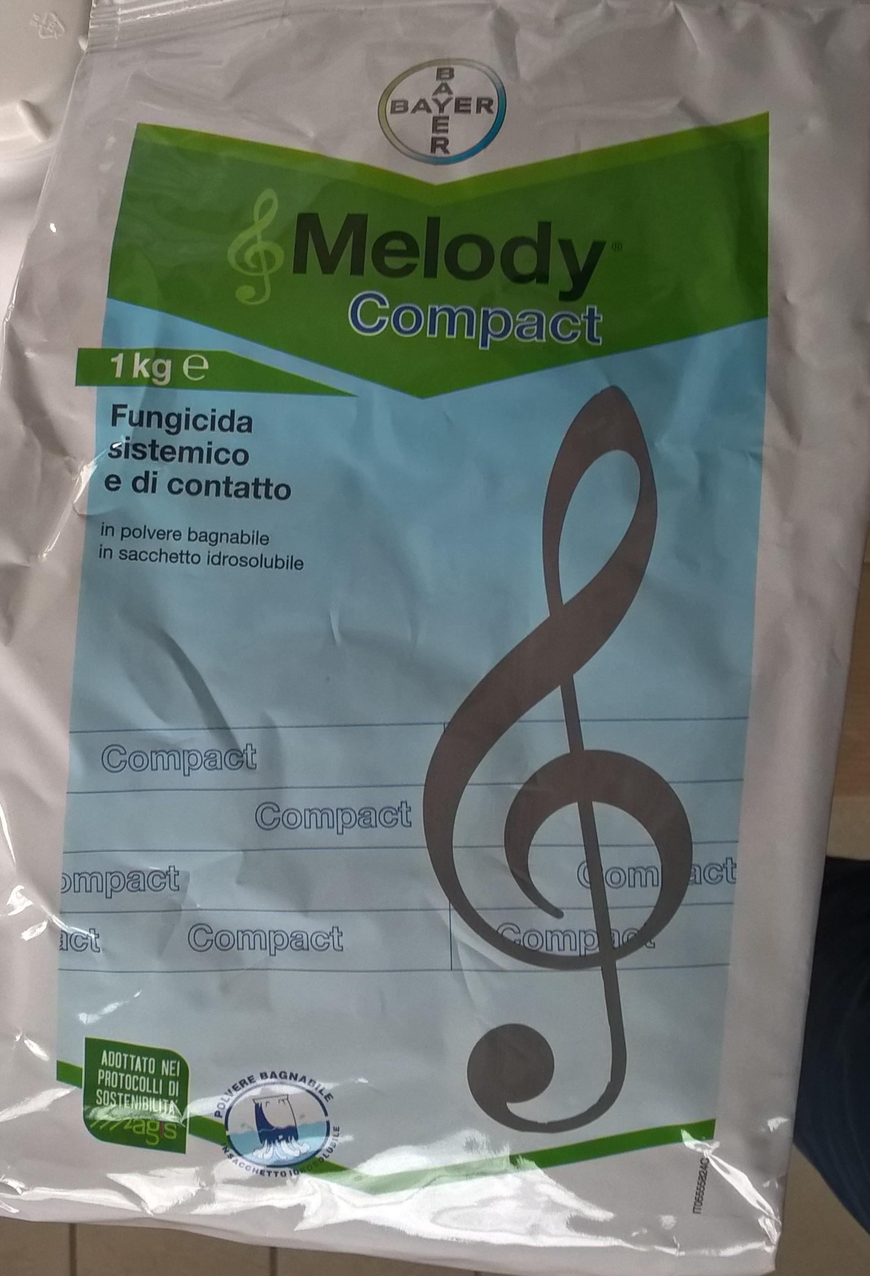 immagine melody