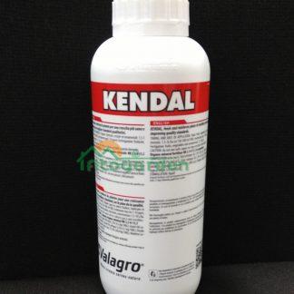kendal_foto