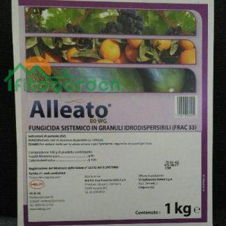 ALLEATO